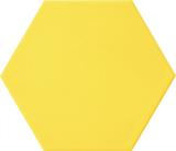 六角砖MY23202